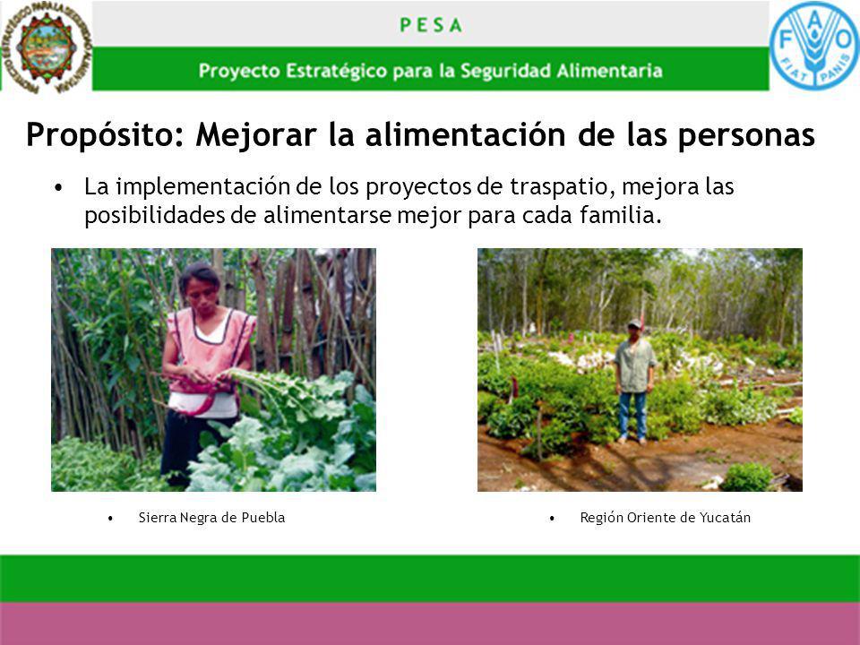 Propósito: Mejorar la alimentación de las personas La implementación de los proyectos de traspatio, mejora las posibilidades de alimentarse mejor para
