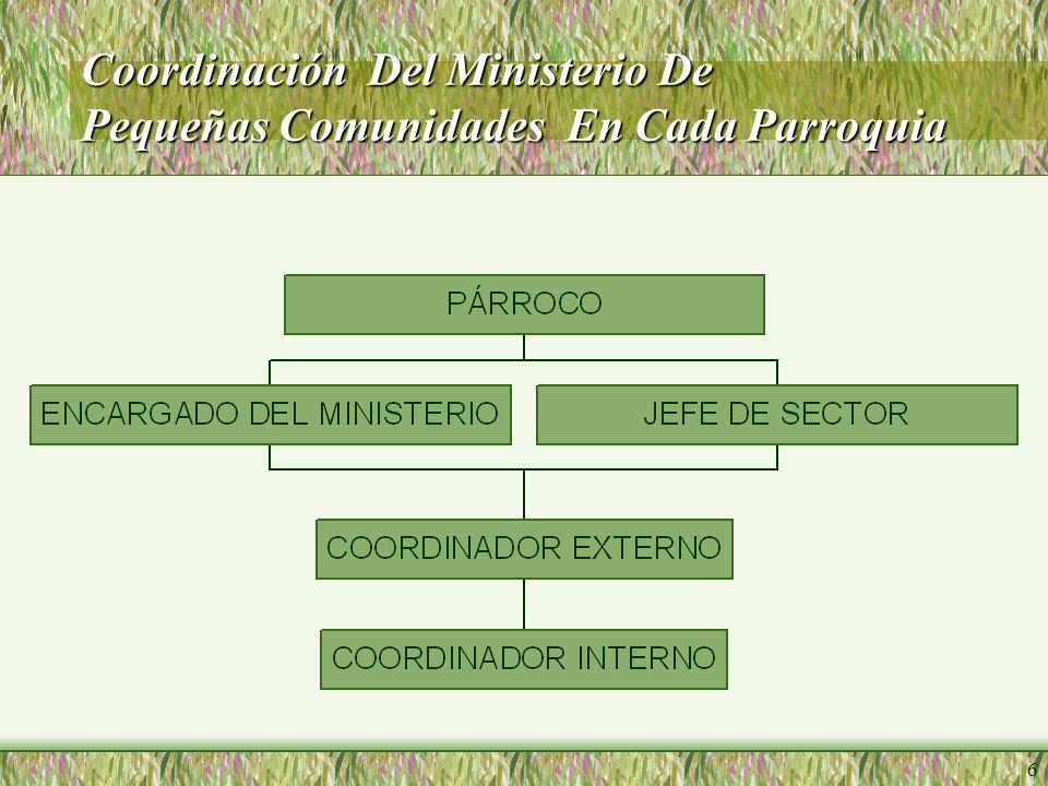 6 Coordinación Del Ministerio De Pequeñas Comunidades En Cada Parroquia