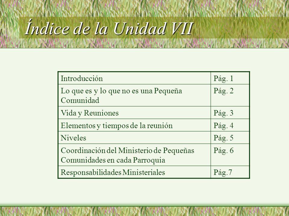 Índice de la Unidad VII IntroducciónPág.1 Lo que es y lo que no es una Pequeña Comunidad Pág.