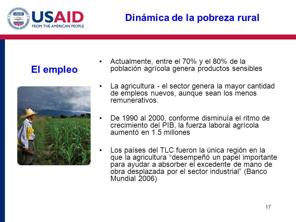 17 Dinámica de la pobreza rural El empleo Actualmente, entre el 70% y el 80% de la población agrícola genera productos sensibles La agricultura - el s