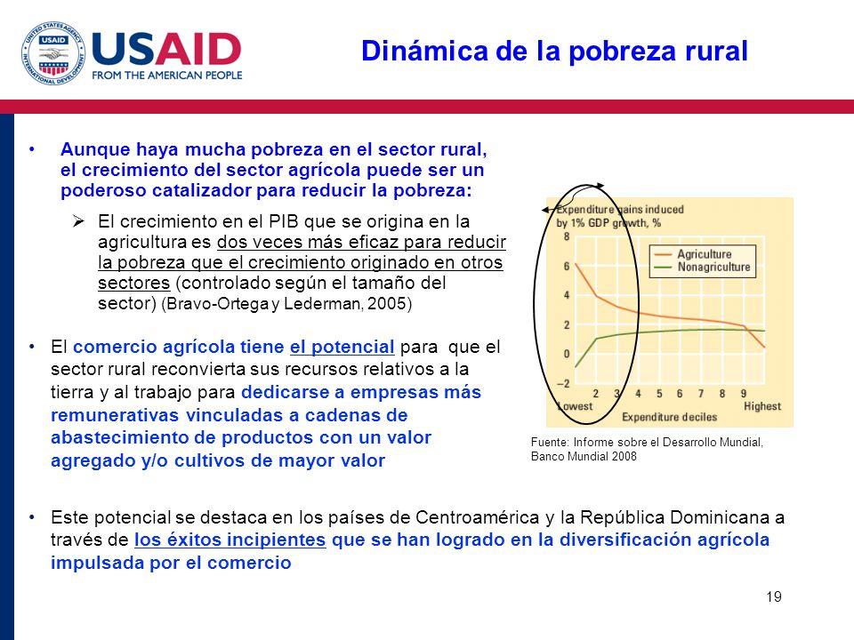 19 Dinámica de la pobreza rural Aunque haya mucha pobreza en el sector rural, el crecimiento del sector agrícola puede ser un poderoso catalizador par