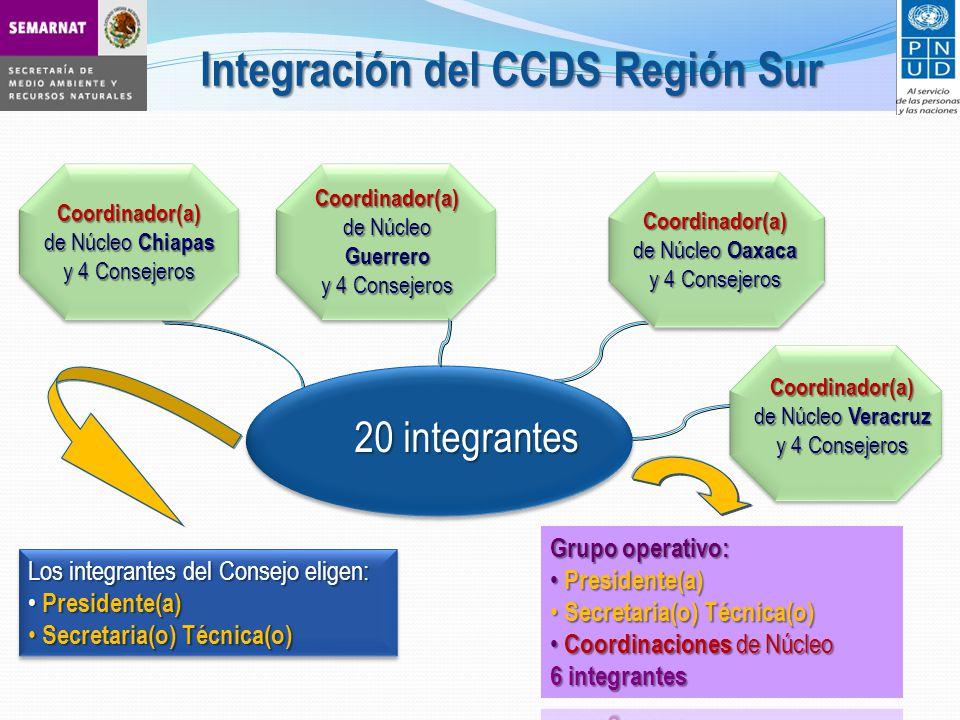 Integración del CCDS Región Sur Coordinador(a) de Núcleo Chiapas y 4 Consejeros 20 integrantes Los integrantes del Consejo eligen: Presidente(a) Presidente(a) Secretaria(o) Técnica(o) Secretaria(o) Técnica(o) Los integrantes del Consejo eligen: Presidente(a) Presidente(a) Secretaria(o) Técnica(o) Secretaria(o) Técnica(o) Coordinador(a) de Núcleo Guerrero y 4 Consejeros Coordinador(a) de Núcleo Oaxaca y 4 Consejeros Coordinador(a) de Núcleo Veracruz y 4 Consejeros