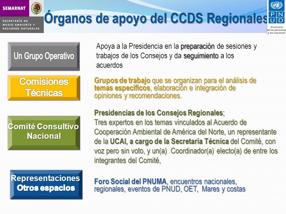 Órganos de apoyo del CCDS Regionales preparación seguimiento Apoya a la Presidencia en la preparación de sesiones y trabajos de los Consejos y da seguimiento a los acuerdos Grupos de trabajo que se organizan para el análisis de temas específicos, elaboración e integración de opiniones y recomendaciones.