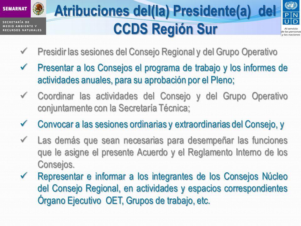 Presidir las sesiones del Consejo Regional y del Grupo Operativo Presidir las sesiones del Consejo Regional y del Grupo Operativo Presentar a los Cons
