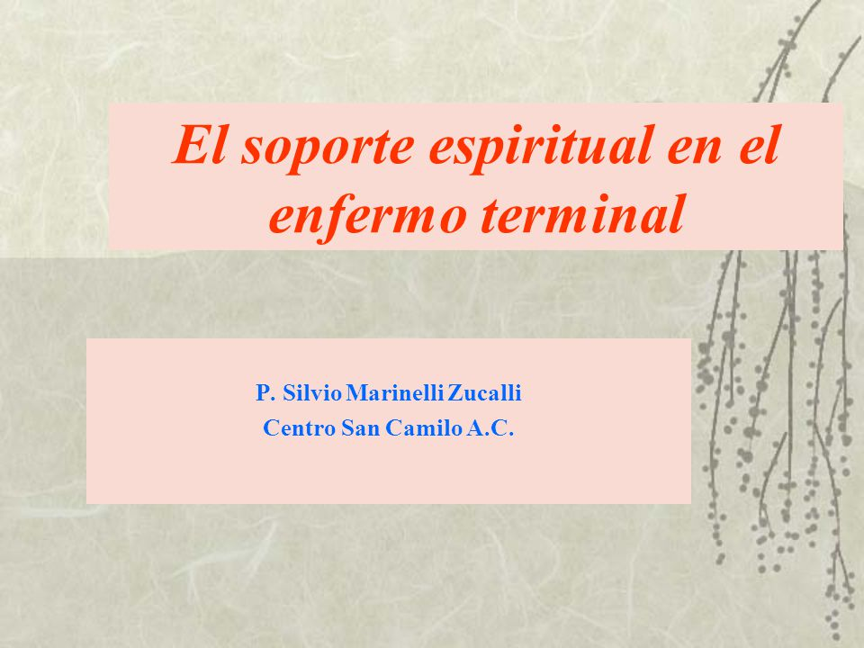 El soporte espiritual en el enfermo terminal P. Silvio Marinelli Zucalli Centro San Camilo A.C.