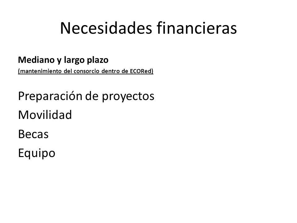 Necesidades financieras Mediano y largo plazo (mantenimiento del consorcio dentro de ECORed) Preparación de proyectos Movilidad Becas Equipo