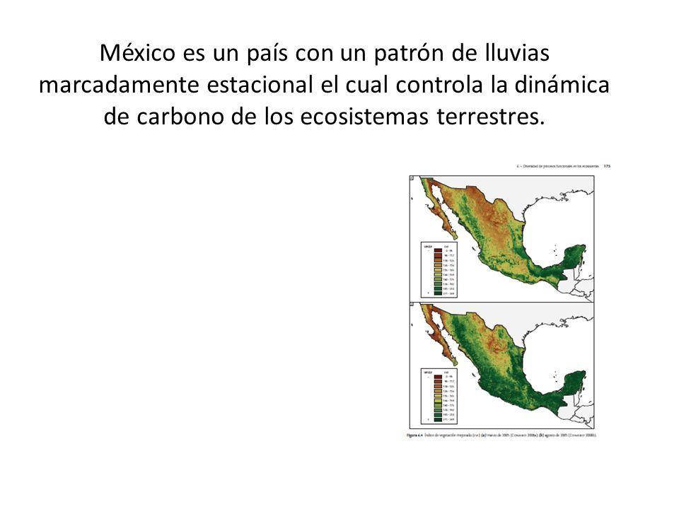 México es un país con un patrón de lluvias marcadamente estacional el cual controla la dinámica de carbono de los ecosistemas terrestres.