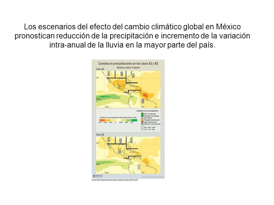 Los escenarios del efecto del cambio climático global en México pronostican reducción de la precipitación e incremento de la variación intra-anual de la lluvia en la mayor parte del país.
