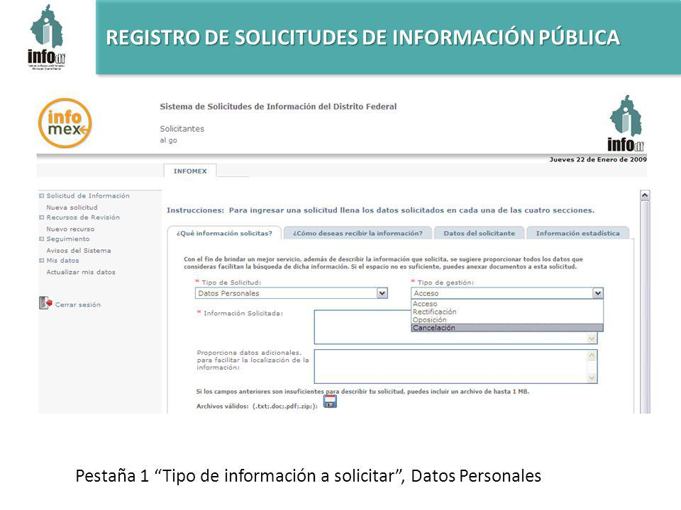 REGISTRO DE SOLICITUDES DE INFORMACIÓN PÚBLICA Pestaña 1 Tipo de información a solicitar, Datos Personales
