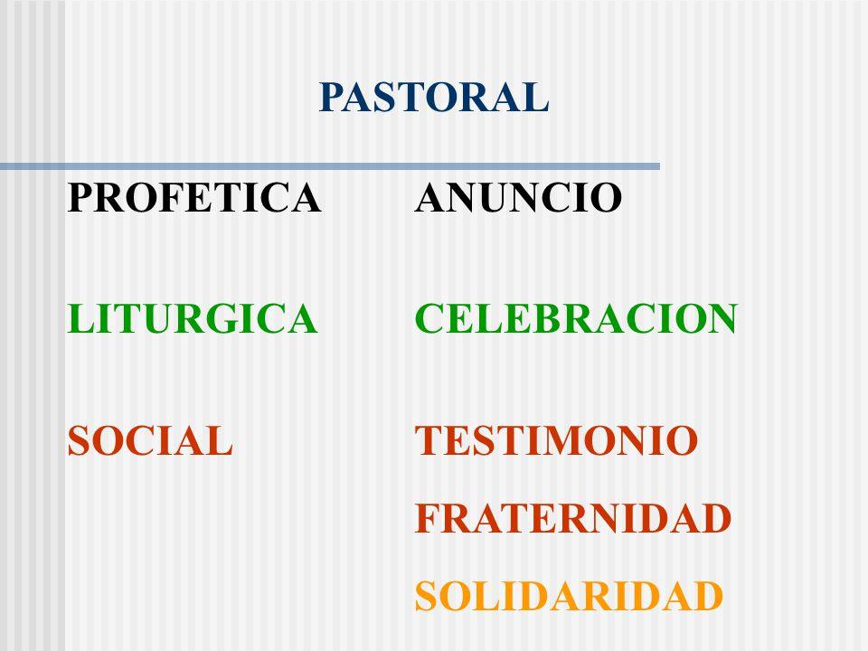 Enseñanza de los Apóstoles ANUNCIO Fracción del pan CELEBRACION Vivían unidos FRATERNIDAD Compartían SOLIDARIDAD