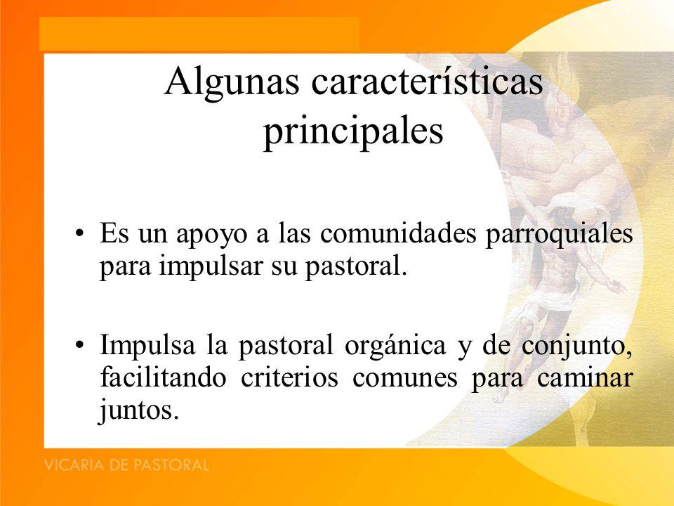 Algunas características principales Es un apoyo a las comunidades parroquiales para impulsar su pastoral.