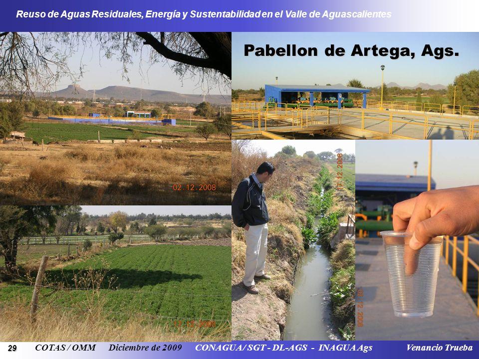 29 Reuso de Aguas Residuales, Energía y Sustentabilidad en el Valle de Aguascalientes COTAS / OMM Diciembre de 2009 CONAGUA / SGT - DL-AGS - INAGUA Ag