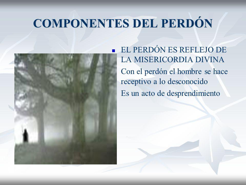 COMPONENTES DEL PERDÓN EL PERDÓN ES REFLEJO DE LA MISERICORDIA DIVINA El arco iris entre Dios y los hombres es el perdón