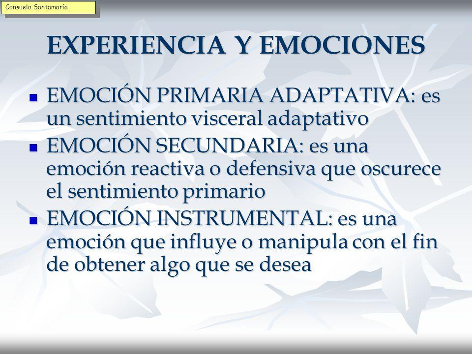 MANEJO DE LAS EMOCIONES Determinar qué deseos de hacer algo o de expresar acompañaron Determinar qué deseos de hacer algo o de expresar acompañaron Describir qué produjo la emoción o el estado de ánimo, si fue un suceso externo o interno Describir qué produjo la emoción o el estado de ánimo, si fue un suceso externo o interno Identificar qué información te proporciona la emoción (sobre uno mismo, relaciones, metas, etc.) Identificar qué información te proporciona la emoción (sobre uno mismo, relaciones, metas, etc.) Reflexionar sobre la respuesta emocional y dar sentido a lo que sientes o puedes hacer Reflexionar sobre la respuesta emocional y dar sentido a lo que sientes o puedes hacer Consuelo Santamaría