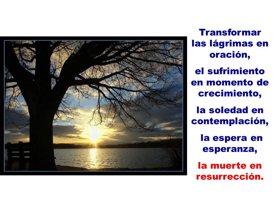 Transformar las lágrimas en oración, el sufrimiento en momento de crecimiento, la soledad en contemplación, la espera en esperanza, la muerte en resur