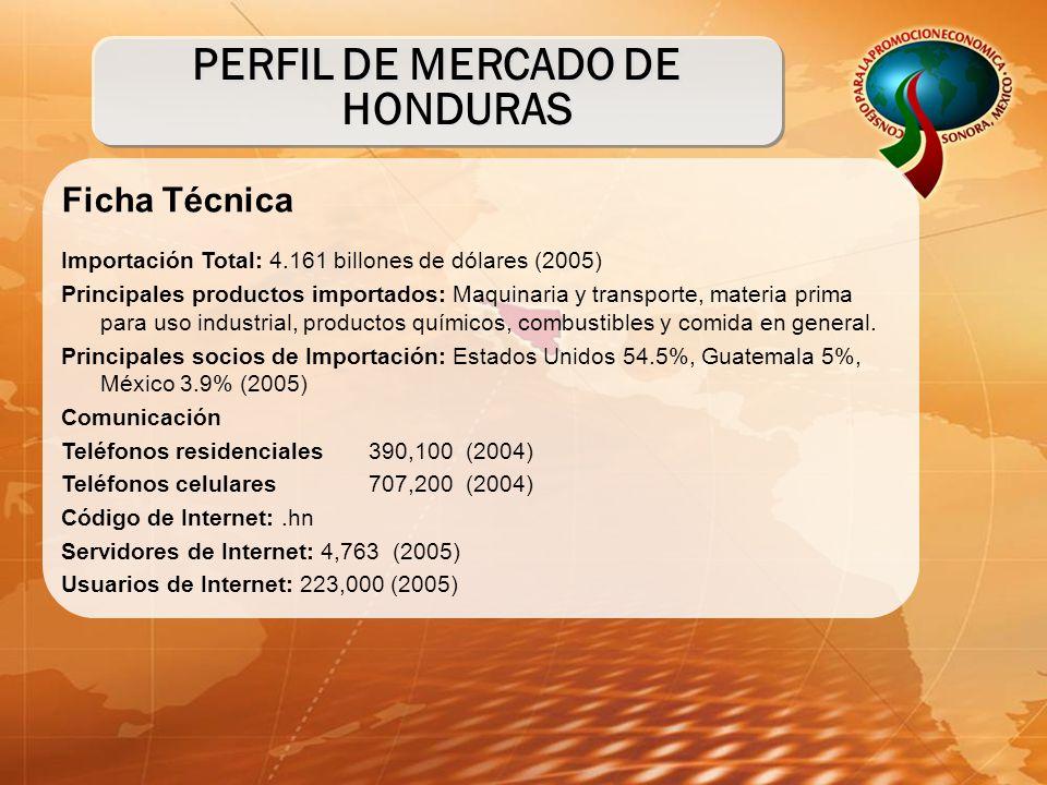 Ficha Técnica Importación Total: 4.161 billones de dólares (2005) Principales productos importados: Maquinaria y transporte, materia prima para uso industrial, productos químicos, combustibles y comida en general.
