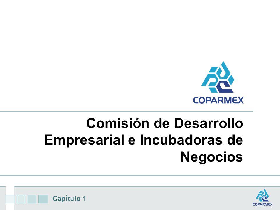 Capítulo 1 Comisión de Desarrollo Empresarial e Incubadoras de Negocios