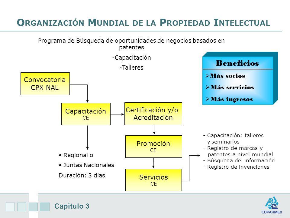 Capítulo 3 O RGANIZACIÓN M UNDIAL DE LA P ROPIEDAD I NTELECTUAL Capacitación CE Certificación y/o Acreditación Convocatoria CPX NAL Promoción CE Servicios CE - Capacitación: talleres y seminarios - Registro de marcas y patentes a nivel mundial - Búsqueda de información - Registro de invenciones Regional o Juntas Nacionales Duración: 3 días Programa de Búsqueda de oportunidades de negocios basados en patentes -Capacitación -Talleres Beneficios Más socios Más socios Más servicios Más ingresos