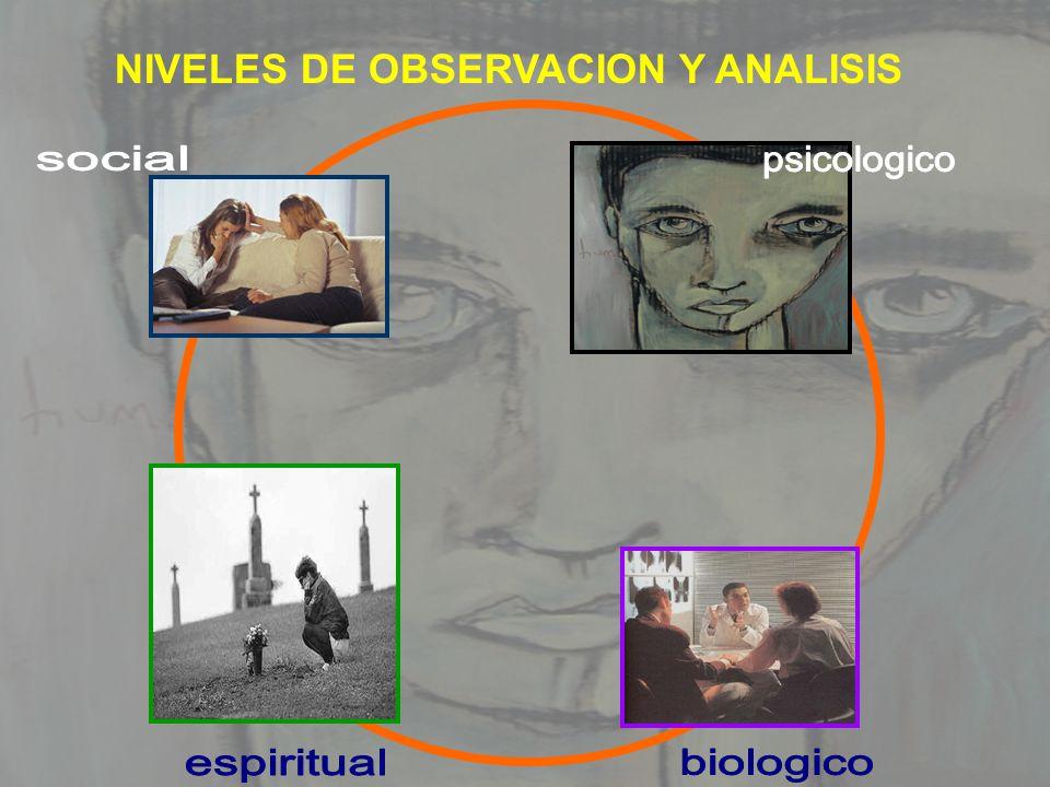 NIVELES DE OBSERVACION Y ANALISIS