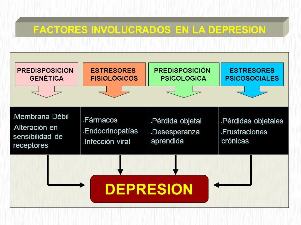 FACTORES INVOLUCRADOS EN LA DEPRESION Membrana Débil Alteración en sensibilidad de receptores Fármacos Endocrinopatías Infección viral Pérdida objetal Desesperanza aprendida Pérdidas objetales Frustraciones crónicas PREDISPOSICION GENÉTICA ESTRESORES FISIOLÓGICOS PREDISPOSICIÓN PSICOLOGICA ESTRESORES PSICOSOCIALES DEPRESION