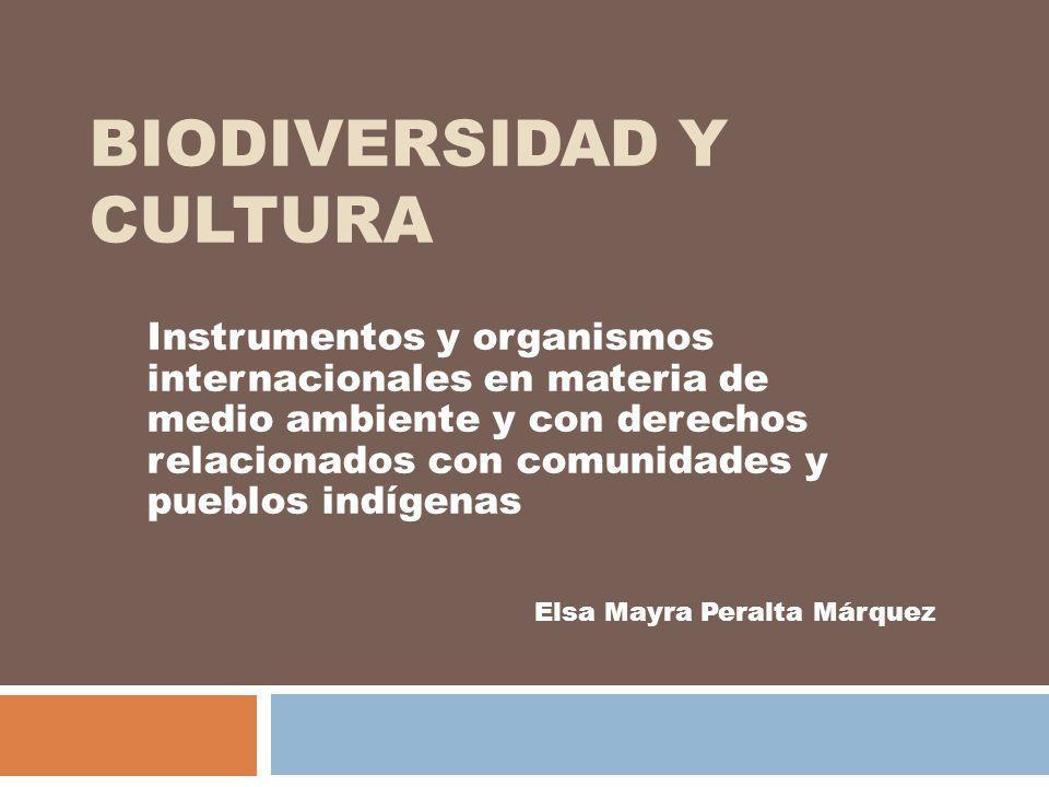 BIODIVERSIDAD Y CULTURA Instrumentos y organismos internacionales en materia de medio ambiente y con derechos relacionados con comunidades y pueblos i