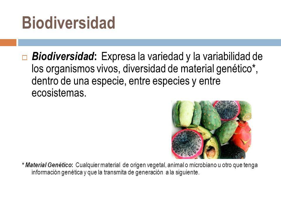 Biodiversidad Biodiversidad : Expresa la variedad y la variabilidad de los organismos vivos, diversidad de material genético*, dentro de una especie,