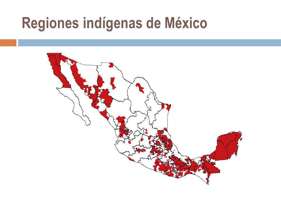 Biodiversidad y pueblos indígenas En México, se calcula que 80% de la población indígena se encuentra asentada en las superficies mejor conservadas del país.
