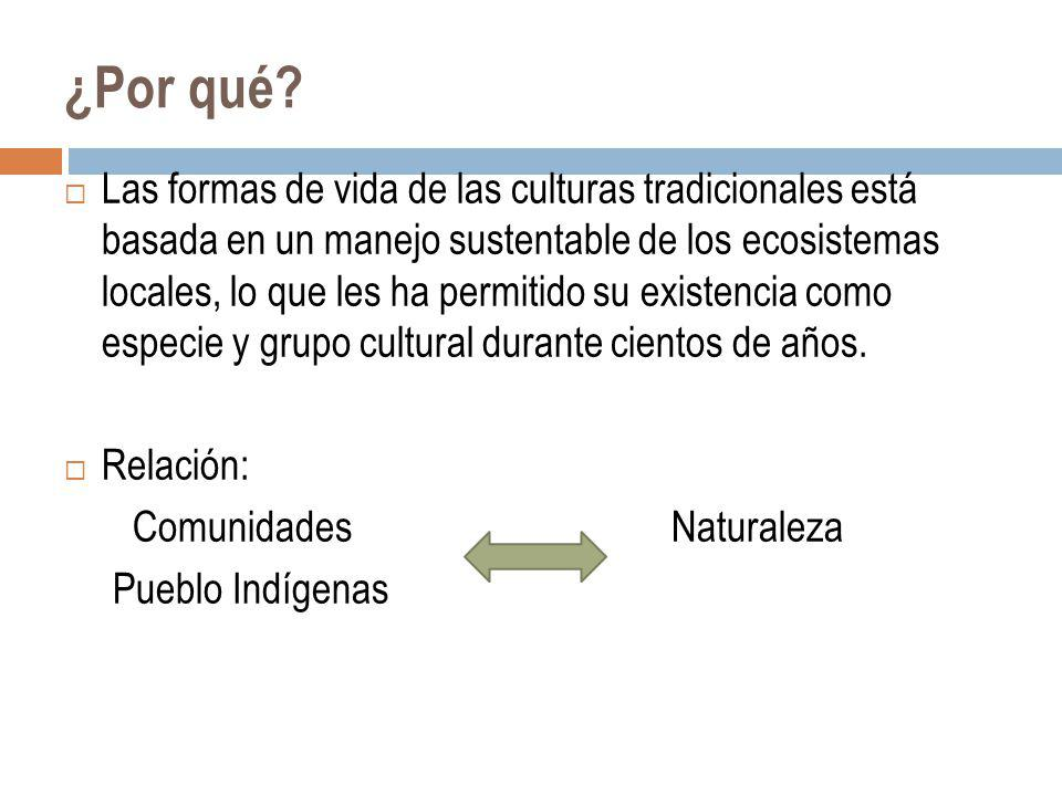¿Por qué? Las formas de vida de las culturas tradicionales está basada en un manejo sustentable de los ecosistemas locales, lo que les ha permitido su