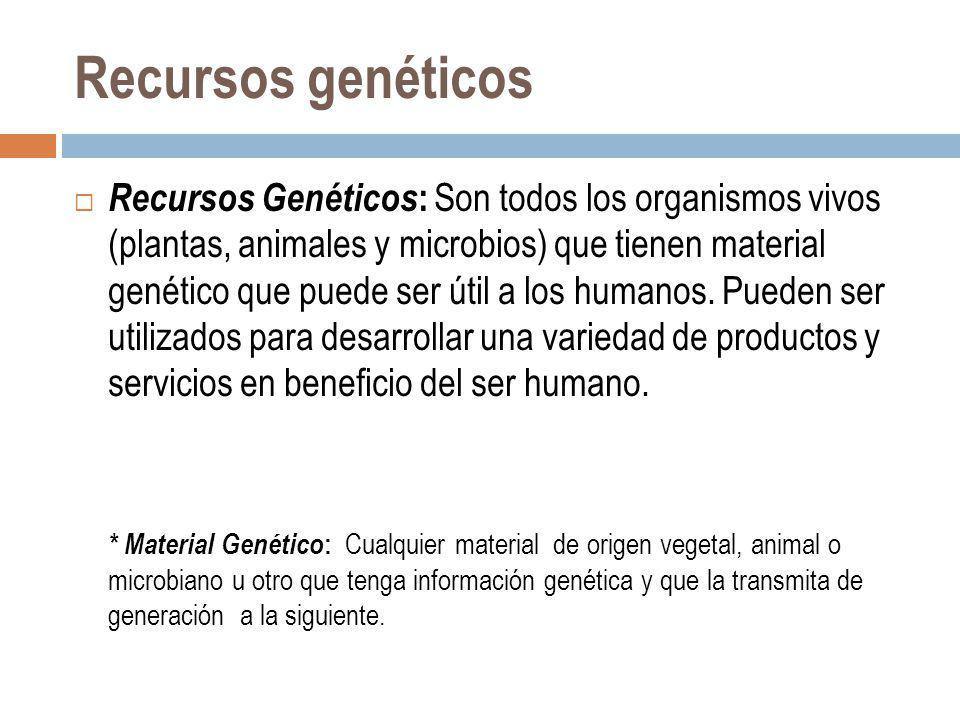 Recursos genéticos Recursos Genéticos : Son todos los organismos vivos (plantas, animales y microbios) que tienen material genético que puede ser útil