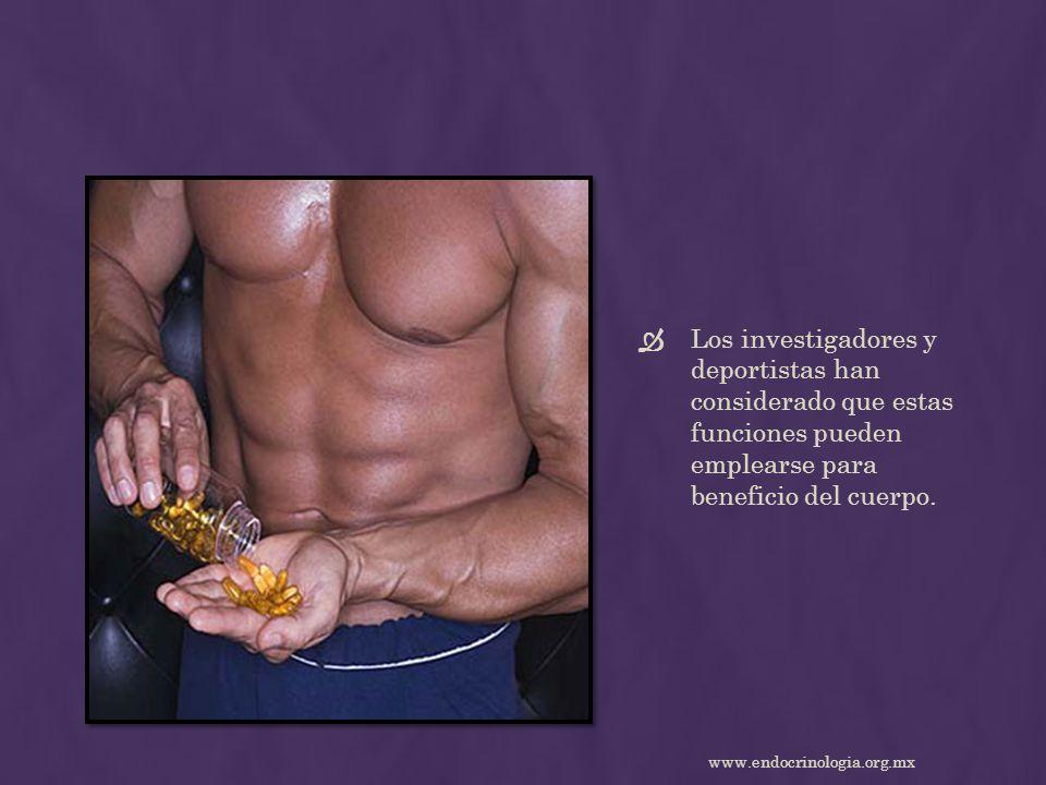 Los investigadores y deportistas han considerado que estas funciones pueden emplearse para beneficio del cuerpo. www.endocrinologia.org.mx