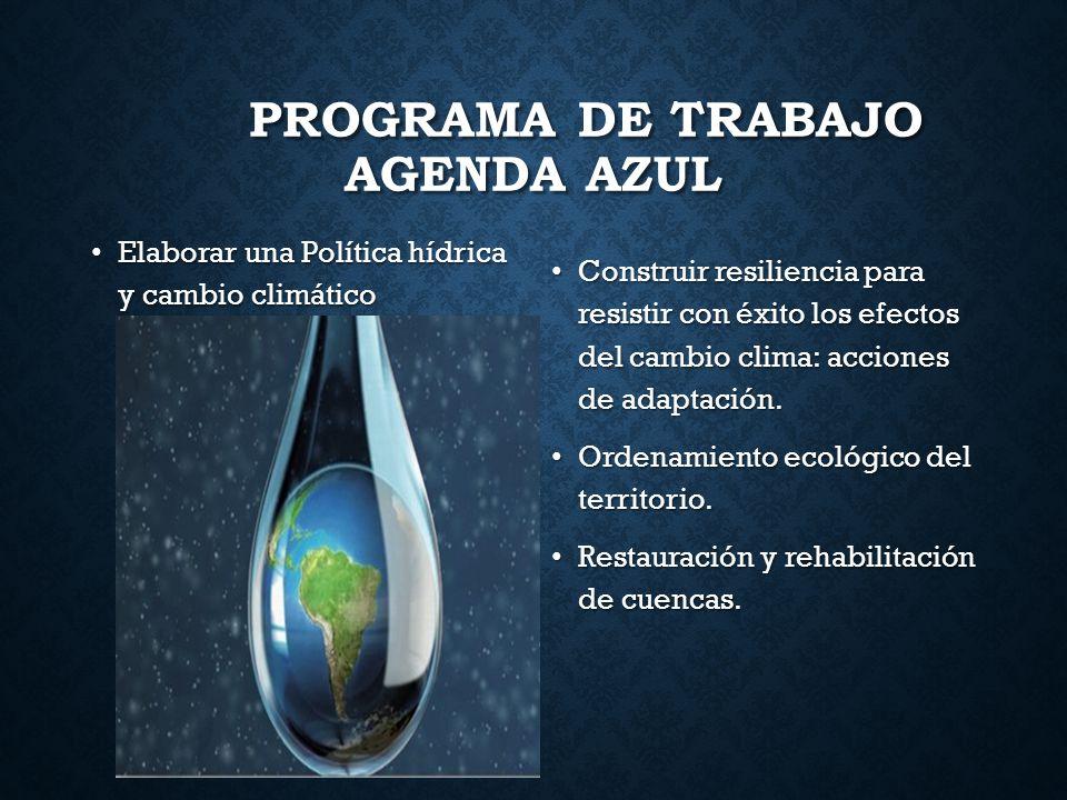 PROGRAMA DE TRABAJO AGENDA AZUL Elaborar una Política hídrica y cambio climático Elaborar una Política hídrica y cambio climático Construir resilienci