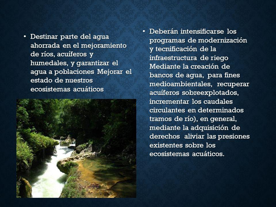 Destinar parte del agua ahorrada en el mejoramiento de ríos, acuíferos y humedales, y garantizar el agua a poblacionesMejorar el estado de nuestros ec
