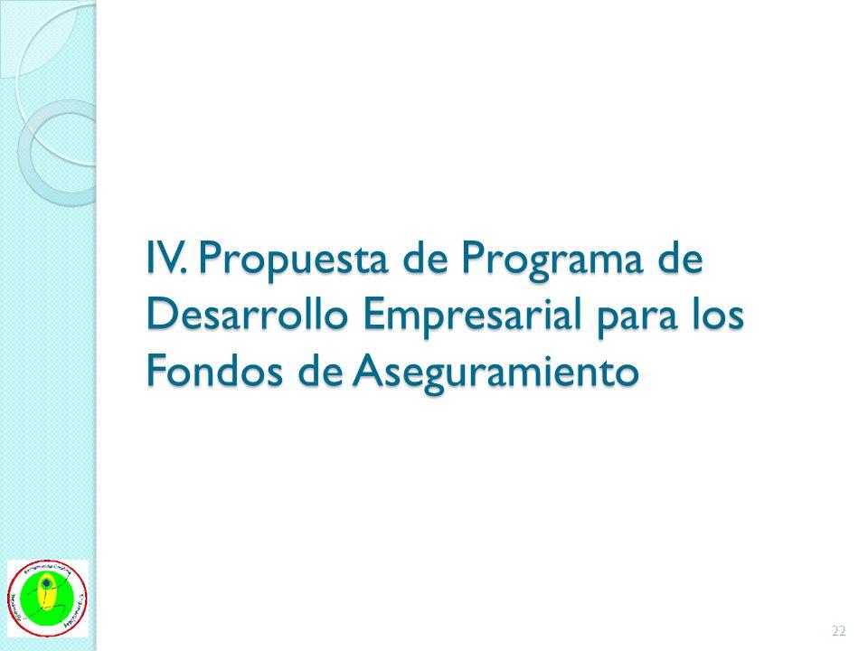 IV. Propuesta de Programa de Desarrollo Empresarial para los Fondos de Aseguramiento 22
