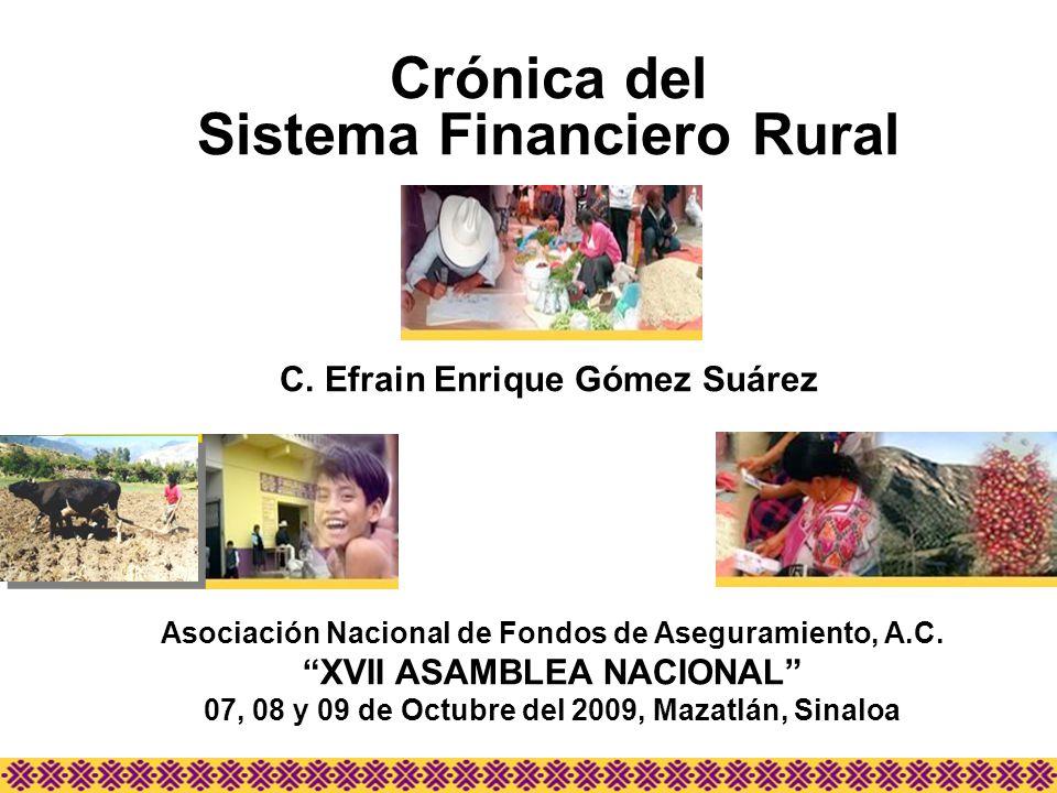 Asociación Nacional de Fondos de Aseguramiento, A.C. XVII ASAMBLEA NACIONAL 07, 08 y 09 de Octubre del 2009, Mazatlán, Sinaloa Crónica del Sistema Fin