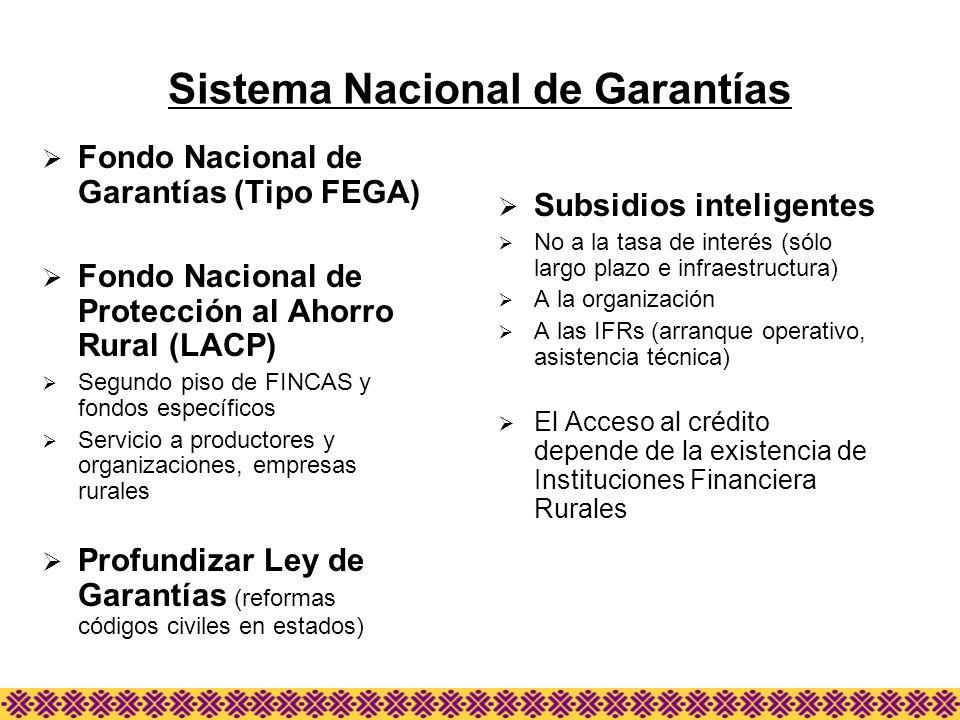 Sistema Nacional de Garantías Fondo Nacional de Garantías (Tipo FEGA) Fondo Nacional de Protección al Ahorro Rural (LACP) Segundo piso de FINCAS y fon