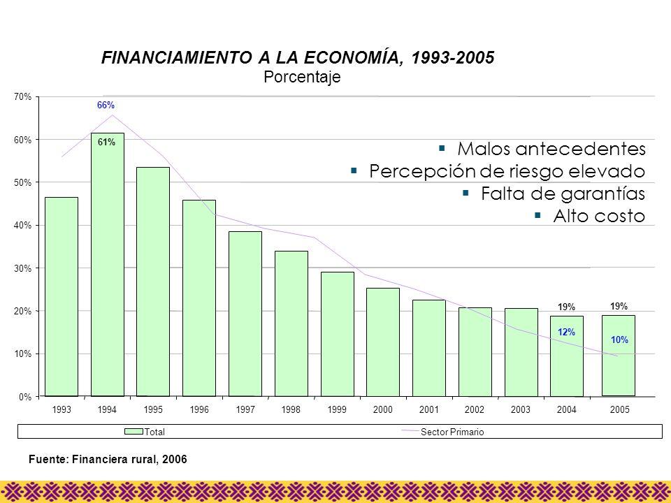 Fuente: Financiera rural, 2006 FINANCIAMIENTO A LA ECONOMÍA, 1993-2005 Porcentaje 19% 61% 12% 66% 0% 10% 20% 30% 40% 50% 60% 70% 199319941995199619971
