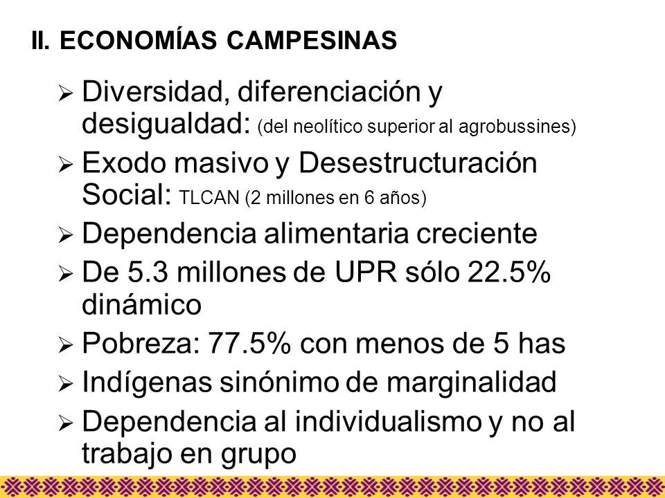 Diversidad, diferenciación y desigualdad: (del neolítico superior al agrobussines) Exodo masivo y Desestructuración Social: TLCAN (2 millones en 6 año