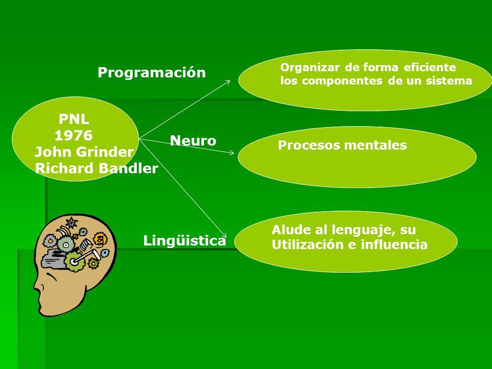PNL 1976 John Grinder Richard Bandler Organizar de forma eficiente los componentes de un sistema Procesos mentales Alude al lenguaje, su Utilización e