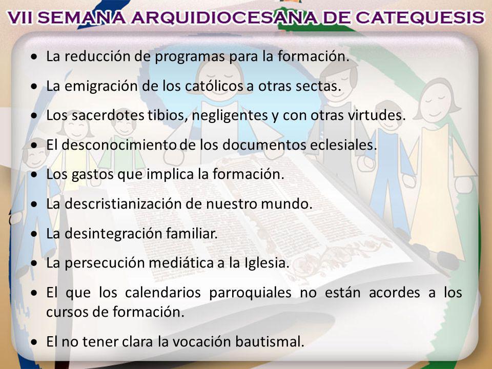 La reducción de programas para la formación. La emigración de los católicos a otras sectas. Los sacerdotes tibios, negligentes y con otras virtudes. E