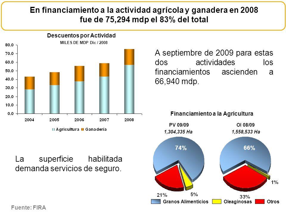 En financiamiento a la actividad agrícola y ganadera en 2008 fue de 75,294 mdp el 83% del total Descuentos por Actividad Financiamiento a la Agricultu