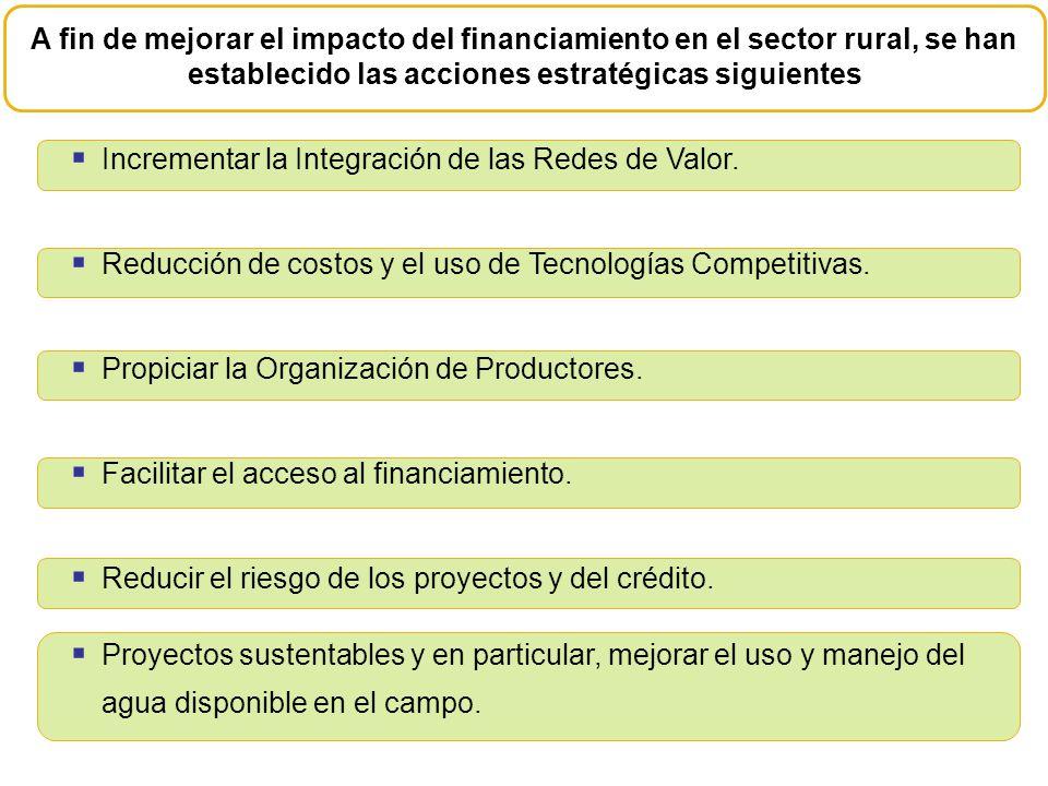Incrementar la Integración de las Redes de Valor. Reducción de costos y el uso de Tecnologías Competitivas. Propiciar la Organización de Productores.