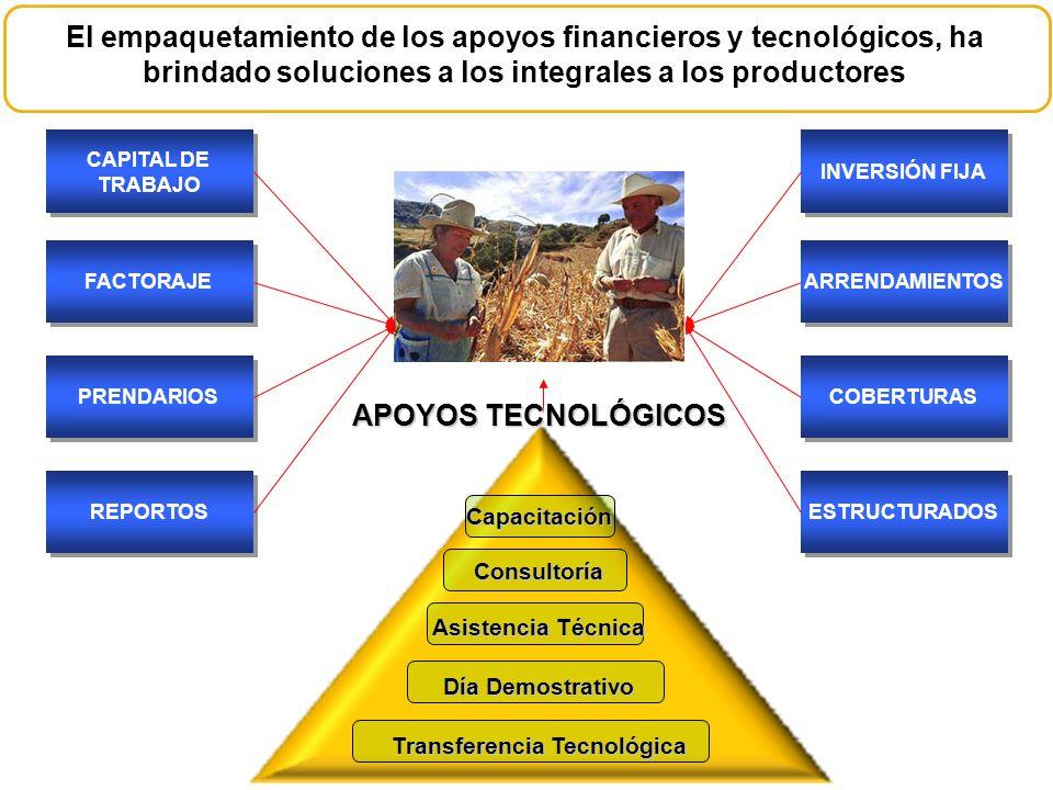 El empaquetamiento de los apoyos financieros y tecnológicos, ha brindado soluciones a los integrales a los productores CAPITAL DE TRABAJO FACTORAJE PR