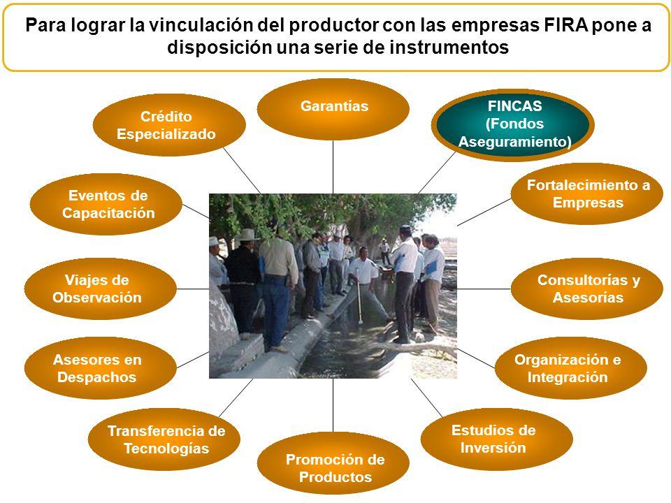 Para lograr la vinculación del productor con las empresas FIRA pone a disposición una serie de instrumentos GarantíasFINCAS (Fondos Aseguramiento) For