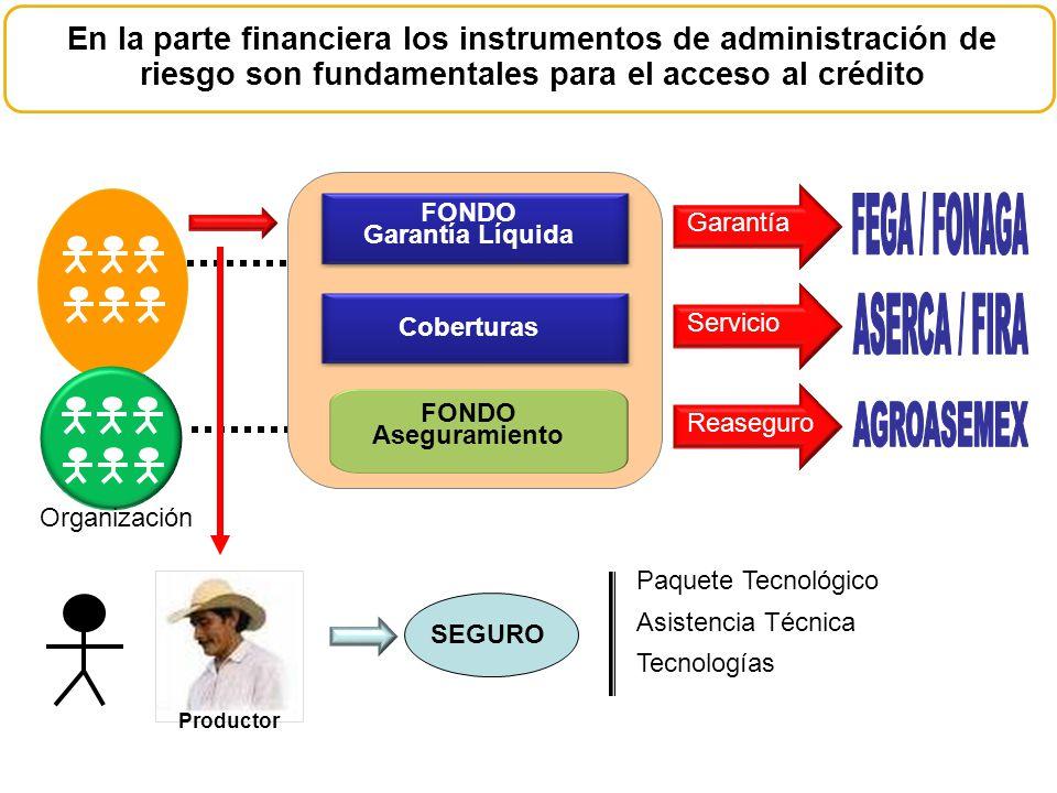 En la parte financiera los instrumentos de administración de riesgo son fundamentales para el acceso al crédito Organización FONDO Garantía Líquida Co