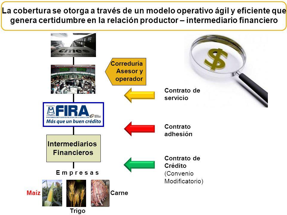 Correduría Asesor y operador E m p r e s a s Intermediarios Financieros Maíz Contrato de Crédito (Convenio Modificatorio) Contrato adhesión Contrato d