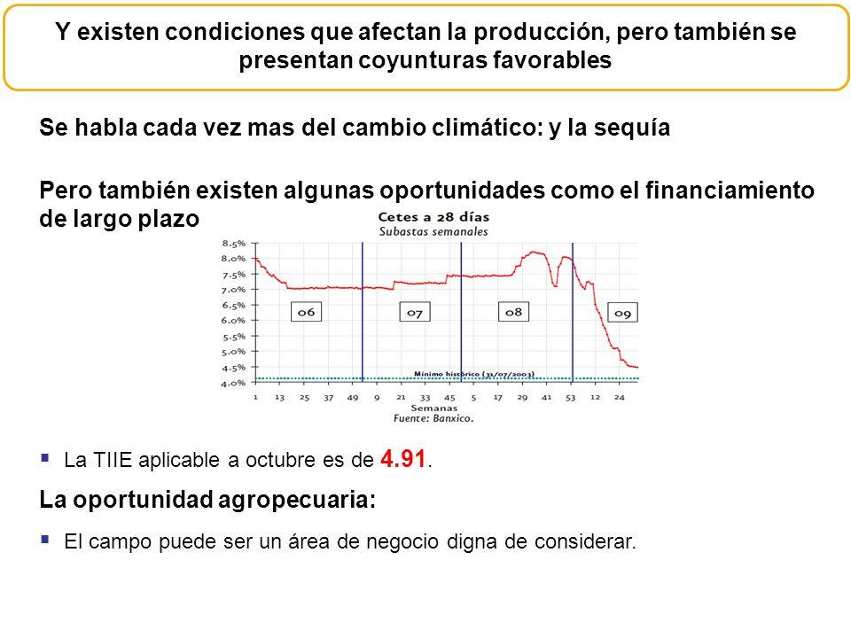 En financiamiento a la actividad agrícola y ganadera en 2008 fue de 75,294 mdp el 83% del total Descuentos por Actividad Financiamiento a la Agricultura A septiembre de 2009 para estas dos actividades los financiamientos ascienden a 66,940 mdp.