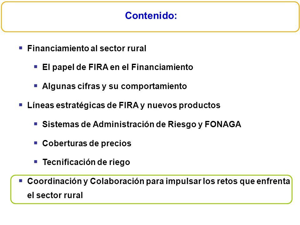 Contenido: Financiamiento al sector rural El papel de FIRA en el Financiamiento Algunas cifras y su comportamiento Líneas estratégicas de FIRA y nuevo