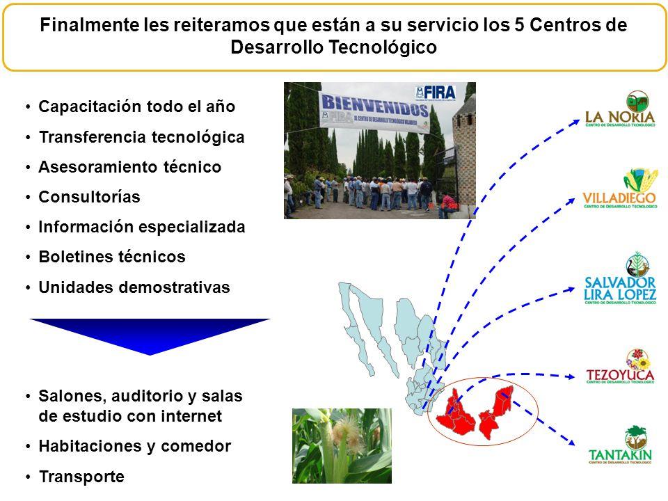 Capacitación todo el año Transferencia tecnológica Asesoramiento técnico Consultorías Información especializada Boletines técnicos Unidades demostrati
