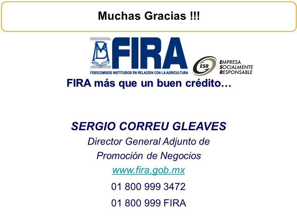 FIRA más que un buen crédito… SERGIO CORREU GLEAVES Director General Adjunto de Promoción de Negocios www.fira.gob.mx 01 800 999 3472 01 800 999 FIRA