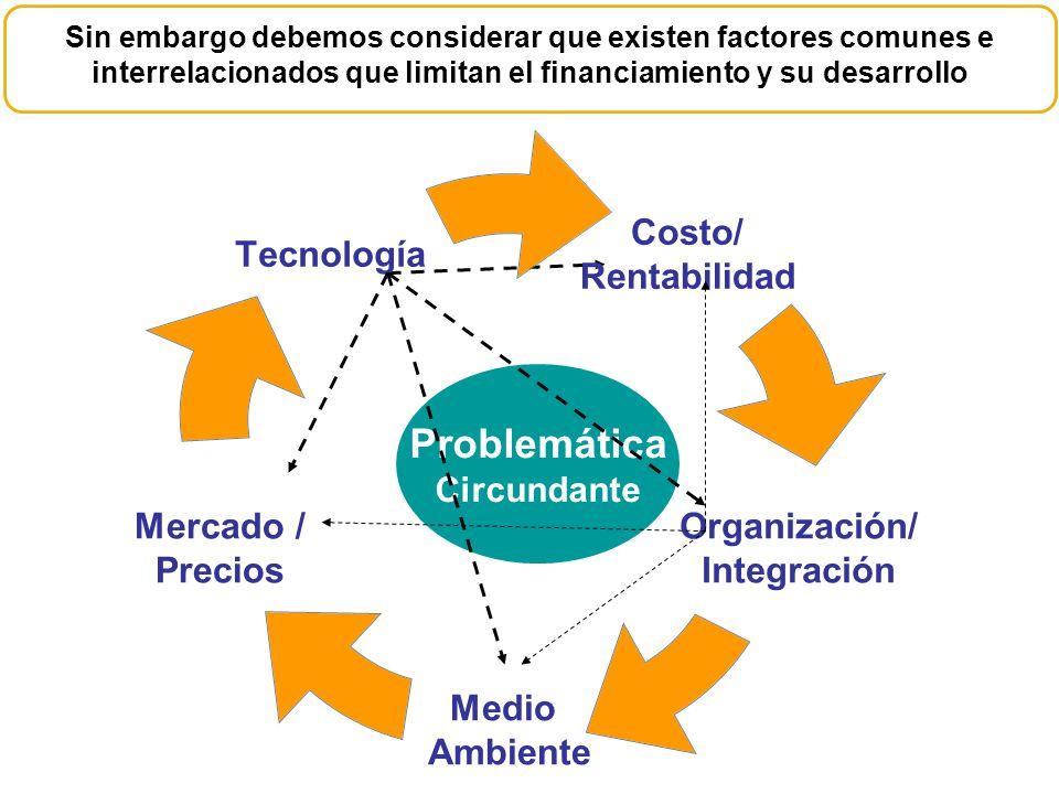 El empaquetamiento de los apoyos financieros y tecnológicos, ha brindado soluciones a los integrales a los productores CAPITAL DE TRABAJO FACTORAJE PRENDARIOS REPORTOS INVERSIÓN FIJA ARRENDAMIENTOS COBERTURAS ESTRUCTURADOS APOYOS TECNOLÓGICOS CapacitaciónConsultoría Asistencia Técnica Día Demostrativo Transferencia Tecnológica